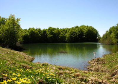 Lago secco 2
